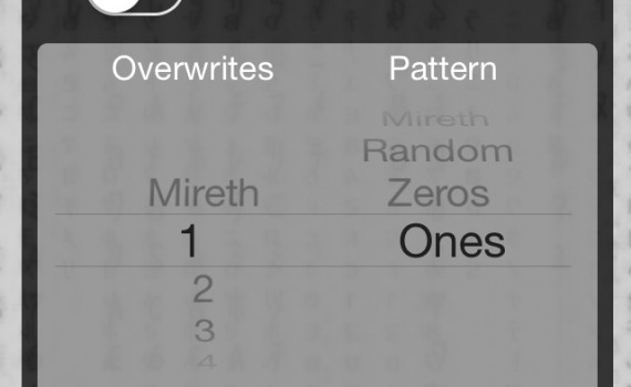Shredit Progress Screen - secure delete iPhone, iPad, iPod, iOS